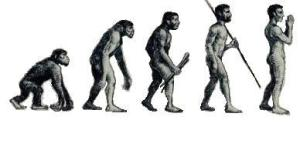 EvolutionHomoReligiosus2